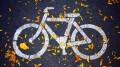 asphalt-bicycle-colors-686230